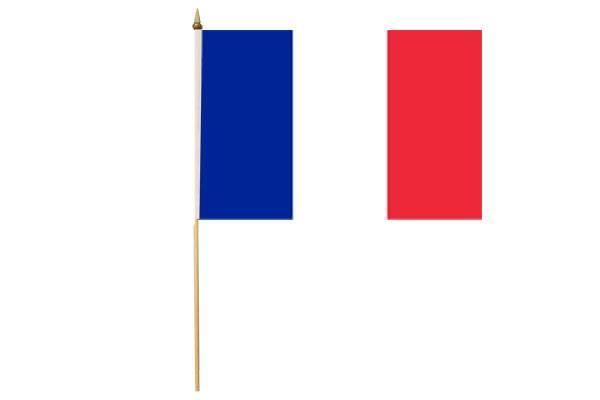 Drapeau avec Hampe France 15 x 20 cm
