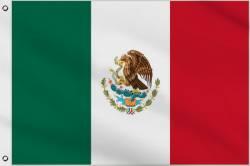 Drapeau Mexique 30 x 45 cm
