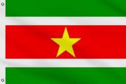 Drapeau Suriname 90 x 150 cm