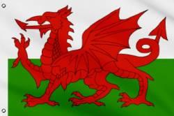 Drapeau Pays de Galles 150 x 240 cm