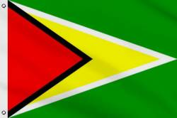 Drapeau Guyana 60 x 90 cm