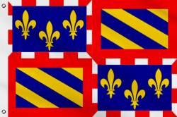 Drapeau Bourgogne 90 x 150 cm