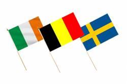 Pack des 24 Drapeaux avec Hampe EURO 2016 30 x 45 cm