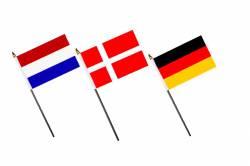 Pack des 24 Drapeaux de Table EURO 2016 10 x 15 cm